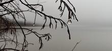 Dew Drop Rain Mist Water