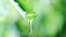 Dropping Aloe Vera Liquid From...