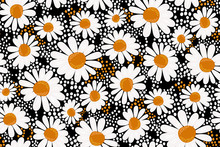 Floral Pattern In Daisies Flowers On A Dark (black) Background With Polka Dots. Chamomile Print. Seamless Vector Texture. Vintage Botanical Wallpaper. Elegant Template For Fashion Design. Retro Chic.
