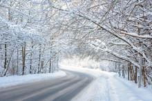 Road In Winter Forest. Scenic ...