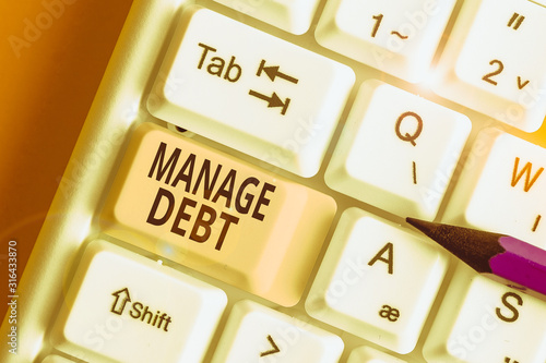 Word writing text Manage Debt Wallpaper Mural