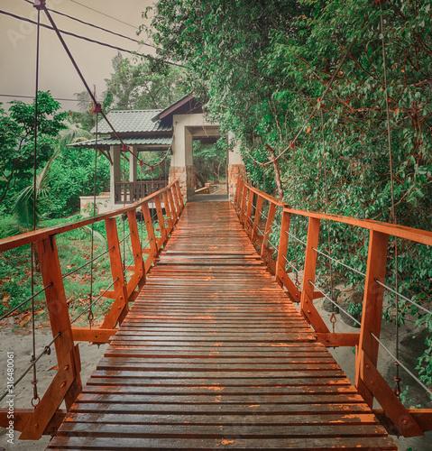 Footbridge at Penang national park, Malaysia #316480061