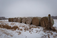 Bales Of Hay Covered In Snow