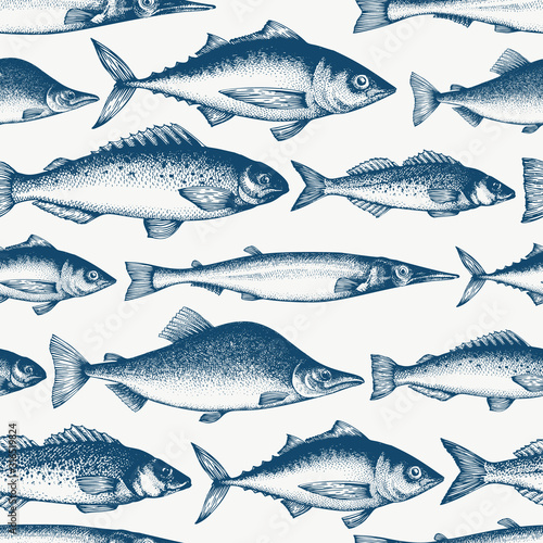 mata magnetyczna Fish seamless pattern. Hand drawn vector fishes illustration. Engraved style. Vintage different kinds of fish background.