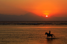 Silhouette Of A Horse And Ride...