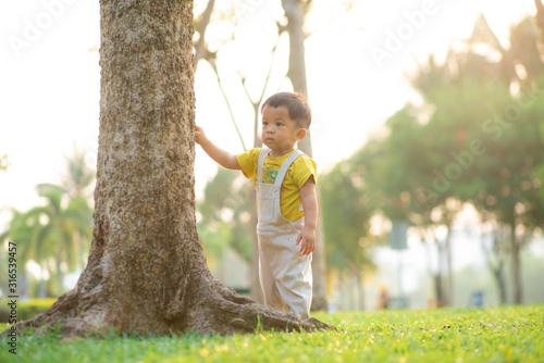 Obraz Toddler baby boy practice to walking in city park evening sunset tree green grass - fototapety do salonu
