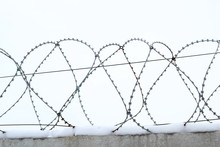 Barbed Wire In Winter, Wall
