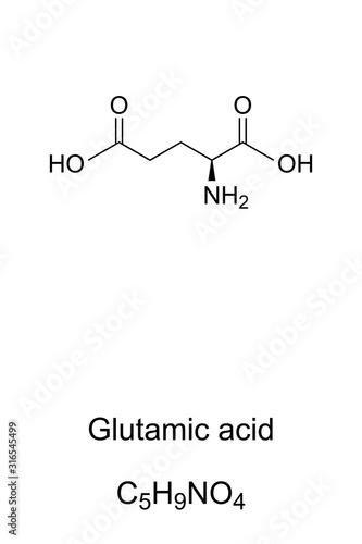 Glutamic acid molecule, skeletal formula Canvas Print