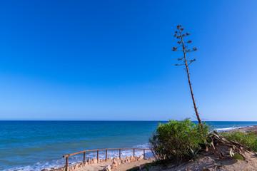 Almeria is heaven, earth and sea