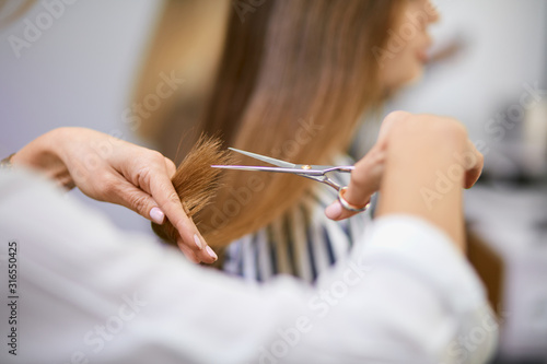 Obraz modern professional woman working as hairdresser and cutting hair tips of a female customer in beauty salon - fototapety do salonu