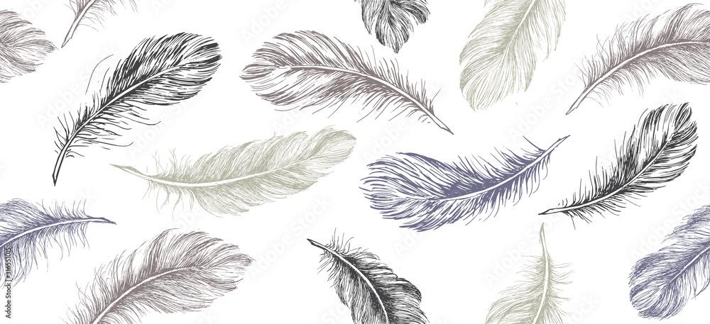 Fototapeta Hand drawn feather on white background.