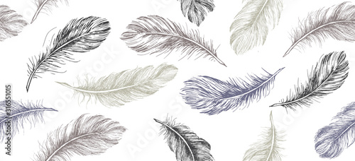 Hand drawn feather on white background. Wallpaper Mural
