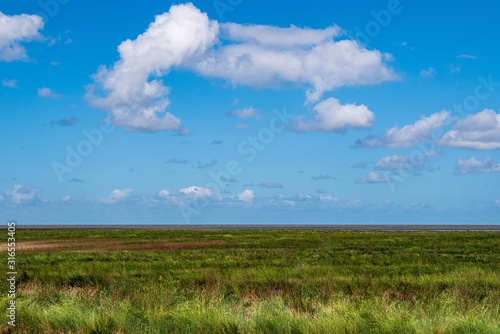 View over the marshland to the north sea, wonderful blue sky with white clouds, Fototapeta