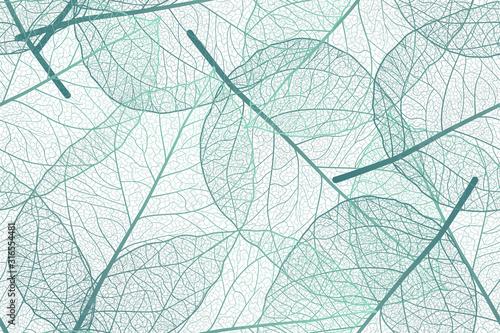 Fototapeta Seamless pattern with leaves veins. Vector illustration. obraz