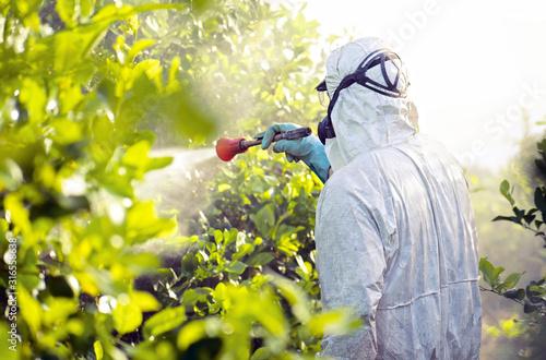Fotografía Weed insecticide fumigation