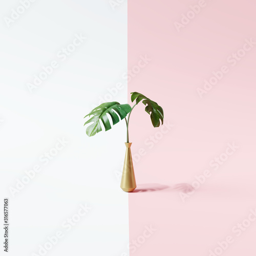 Monstera leaves on white and pink background. Minimal concept. 3d rendering