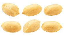 Peanut Isolated On White Backg...