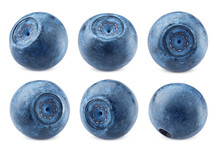 Blueberry, Isolated On White B...