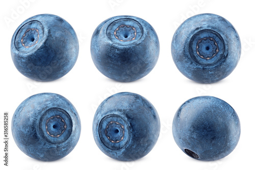 blueberry, isolated on white background, clipping path, full depth of field Canvas Print