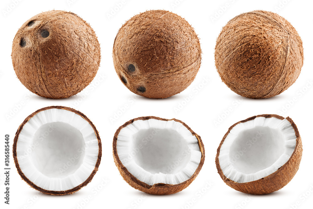 Fototapeta coconut, isolated on white background, full depth of field, clipping path