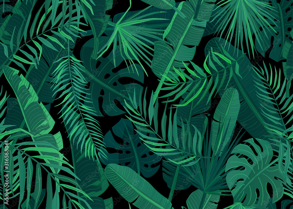 Fototapeta Tropic seamless pattern vector illustration. Tropical floral endless background with exotic palm, banana, monstera leaves on dark black backdrop