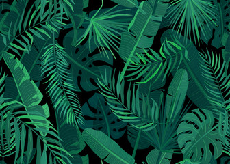 Tropic seamless pattern vector illustration. Tropical floral endless background with exotic palm, banana, monstera leaves on dark black backdrop