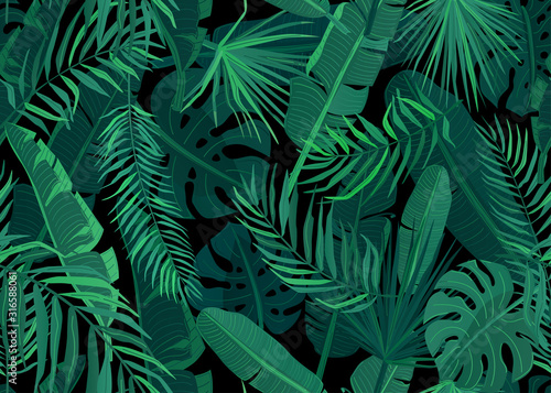 Obraz Tropic seamless pattern vector illustration. Tropical floral endless background with exotic palm, banana, monstera leaves on dark black backdrop - fototapety do salonu