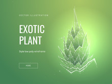 Exotic Plant Low Poly Wireframe Landing Page Template