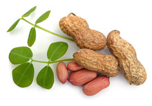 Peanuts And Leaves.
