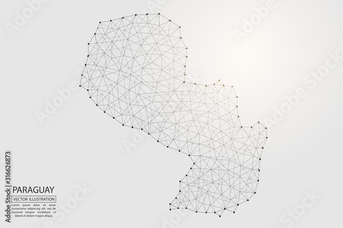 A map of Paraguay consisting of 3D triangles, lines, points, and connections Canvas Print