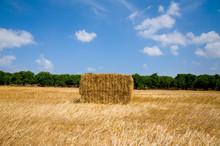 Straw Hay Field