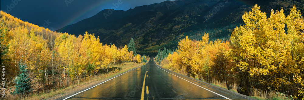 Fototapeta This is the Million Dollar Highway in the rain. The road is dark and wet. There are aspen trees with gold leaves on either side of the road.