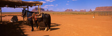 This Is A Horse Left Outside A Dwelling On The Navajo Nation In Monument Valley.