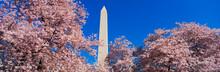 This Is The Washington Monumen...