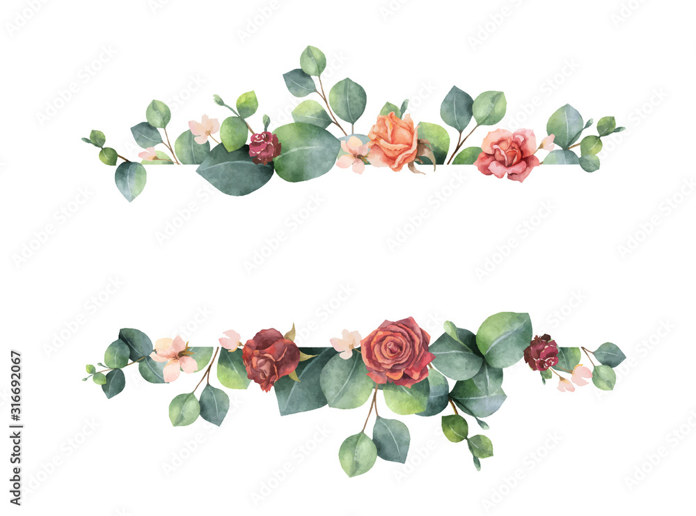 Fototapeta Watercolor vector hand painted banner with green eucalyptus leaves and flowers.