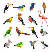 Polygonal Birds. Geometrical Stylized Animals Set Flying Colored Birds Low Poly Vector Set. Geometric Polygon Origami, Animal Colorful Illustration