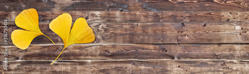 Fototapeta Two yellow ginkgo biloba leaves in the shape of a heart on old wooden panoramic background. Autumn or valentines day header obraz