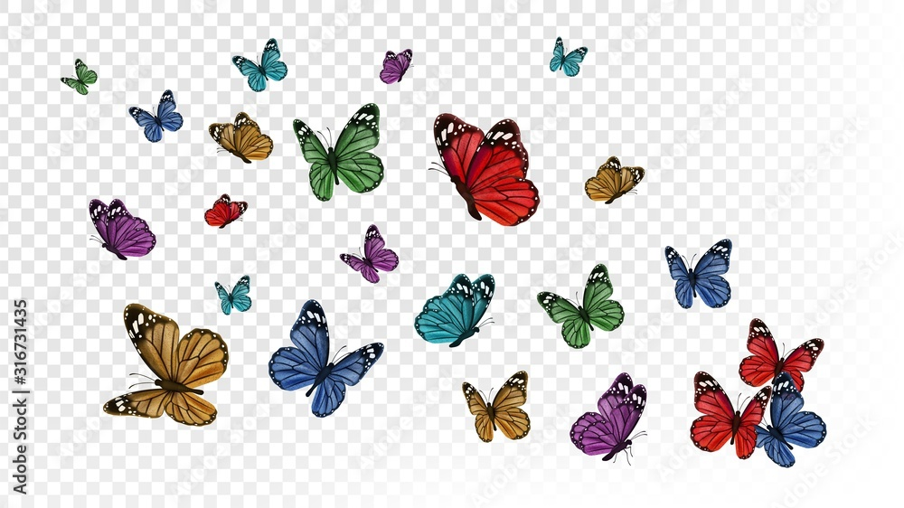 Fototapeta Flying butterflies. Colorful butterfly isolated on transparent background. Spring and summer insects vector illustration. Butterfly summer and spring insect, flying animal