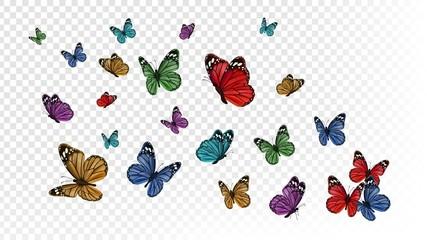 Leteći leptiri. Šareni leptir izoliran na prozirnoj pozadini. Proljeće i ljeto insekti vektorska ilustracija. Leptir ljetni i proljetni kukac, leteća životinja