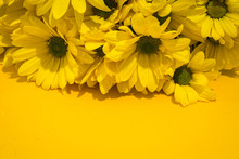 Yellow Chrysanthemum Bouquet On Yellow Background. Copy Space
