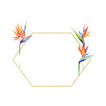 Watercolor And Golden Frames W...