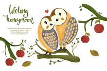 Happy Valentine Day Vector Textured Barn Owl Animal Card In A Flat Style With Quote And Real Facts About Love. Lifelong Honeymoon Romantic Illustration.