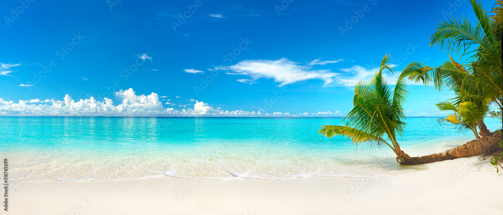 Fototapeta Beautiful beach with white sand, turquoise ocean, blue sky with clouds and palm tree over the water on a Sunny day. Maldives, perfect tropical landscape, ultra wide format.
