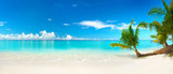 Fototapeta Landscape - Beautiful beach with white sand, turquoise ocean, blue sky with clouds and palm tree over the water on a Sunny day. Maldives, perfect tropical landscape, ultra wide format.