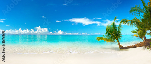 Obraz Beautiful beach with white sand, turquoise ocean, blue sky with clouds and palm tree over the water on a Sunny day. Maldives, perfect tropical landscape, ultra wide format. - fototapety do salonu