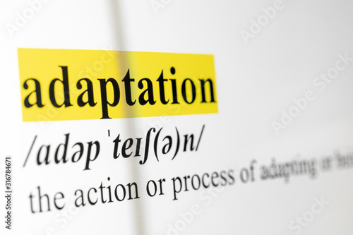 Adaptation Text Macro Shot Highlighted in Yellow Color On Computer Screen Canvas Print