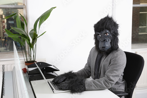 Photo Portrait of young man in gorilla mask using laptop at office