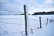 Fence Posts With Barbed Wirde ...