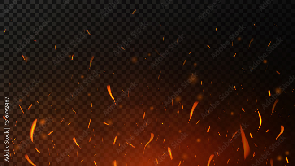 Fototapeta Fire sparks on dark transparent background. Flying up sparks, burning fire particles with smoke texture. Realistic flame effect