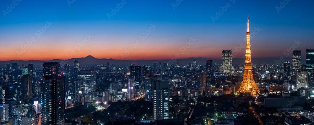 Fototapeta Panorama image of Tokyo tower and skyscrapers at magic hour